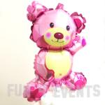 beer ballon roze geboorte